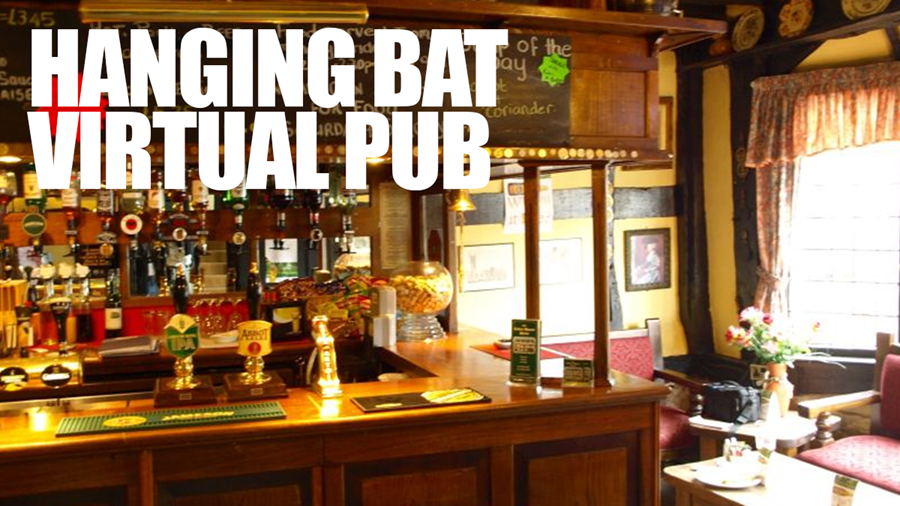 The Hanging Bat Virtual Pub
